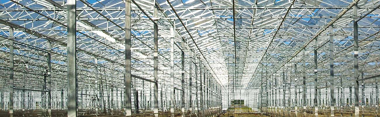 Greenhouse in hot-dip galvanized steel structure.